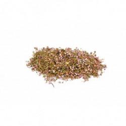 Fleurs de bruyère 100 g