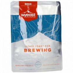 Bevure bière WYEAST XL 1728...