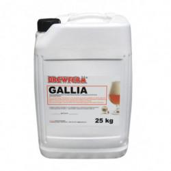 Bierkit BREWFERM GALLIA 25...