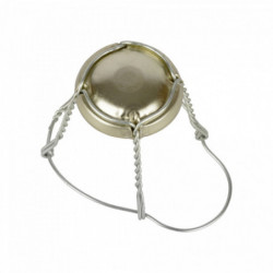 Champagne wire cage with...