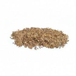 Aneth semence 100 g