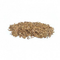 Dill seed 100 g