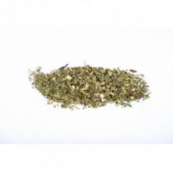 Purpur-Sonnenhut 50 g