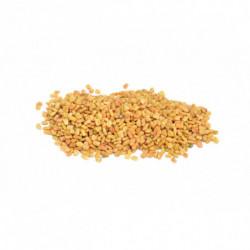 Fenugrec semences 100 g