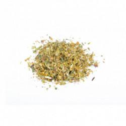 Verge d'or (Solidago) herbe...
