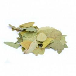 Laurel leaf 50 g