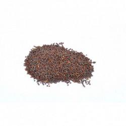 Mosterdzaad bruin 50 g