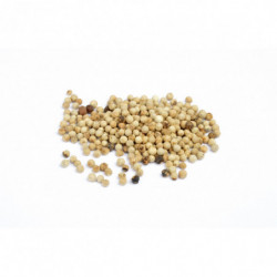 Poivre blanc muntoc grain 50 g