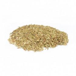 Fenouil semences 50 g