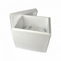Insulating shipping box for...