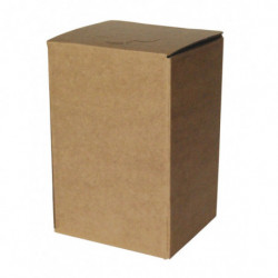 BAG in BOX brown COMPLETE 5 l