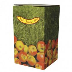 BAG in BOX pomme COMPLET 10 l