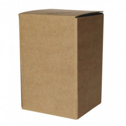 BAG in BOX brown COMPLETE 10 l