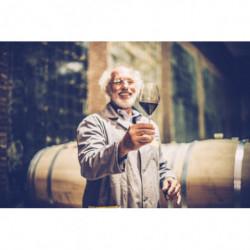 Workshop Wijn maken voor...